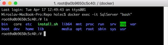 Správa SQL Serveru na macos přes bash